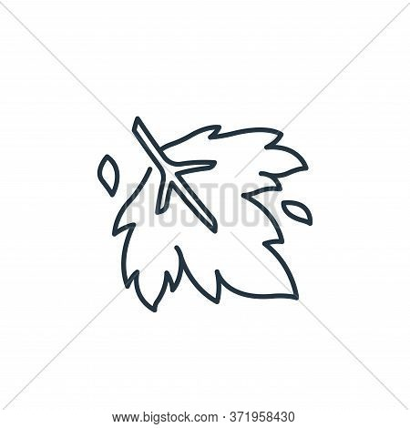 maple leaf icon isolated on white background from  collection. maple leaf icon trendy and modern map