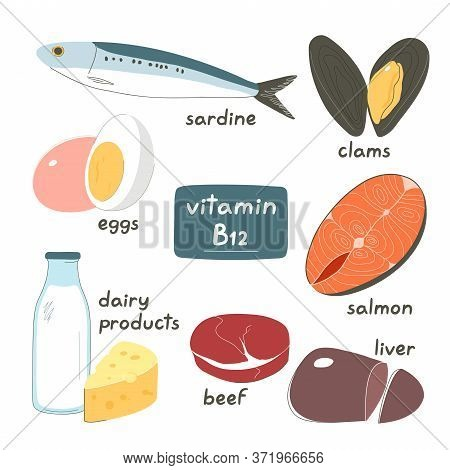 Set Of Products Containing A Great Amount Of Vitamin B12. Foods High In B12. Hand Drawn Flat Vector