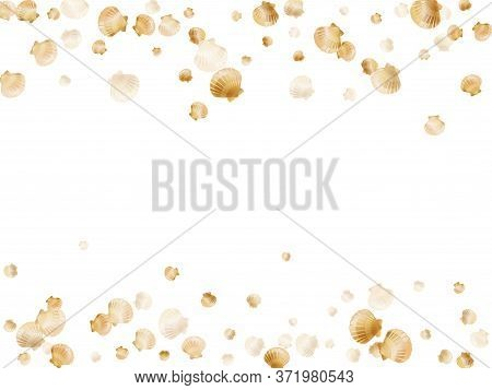 Gold Seashells Vector, Golden Pearl Bivalved Mollusks. Sea Scallop, Bivalve Pearl Shell, Marine Moll