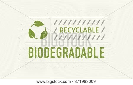 Biodegradable And Recyclable Vintage Label. Old Label With Leaf Icons. Trendy Minimal Design. Label,