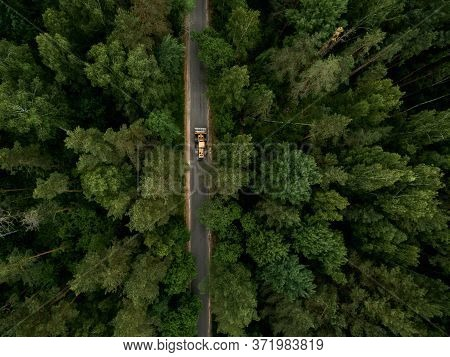 Asphalt Road With A Tractor Through A Green Forest. Summer Landscape. Top View. Drone Photo.