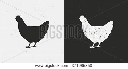 Chicken, Hen Icons Isolated On White And Black Backgrounds. Hen Silhouette With Grunge Texture. Vint