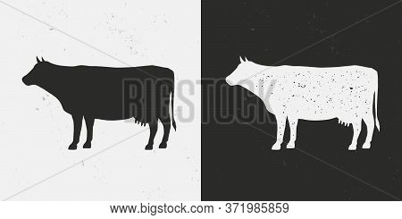 Beef, Cow Icons Isolated On White And Black Backgrounds. Cow Silhouette With Grunge Texture. Vintage