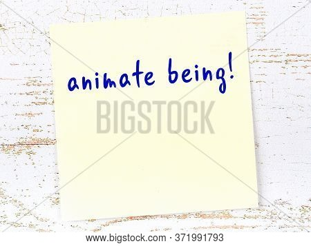 Yellow Sticky Note On Wooden Wall With Handwritten Inscription Animate Being