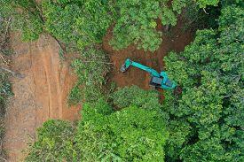 Deforestation. Excavator knocking down trees in forest. Rainforest jungle in Thailand destroyed