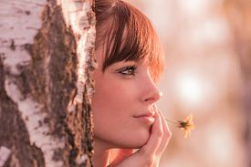 Beautiful Girl With Flower Dreaming In Nature At Tree Trunk. Young Carefree Woman With Best Health A