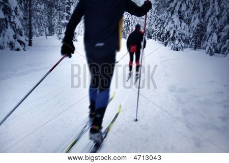 Skier In A Winter Forest