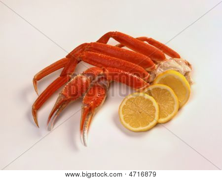 Opilio Snow Crab And Lemons On White