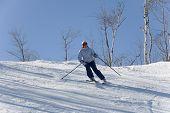 ski 010 toma downhill. poster