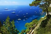 Yachting on the Mediteranean Sea, Capri Island, Europe poster