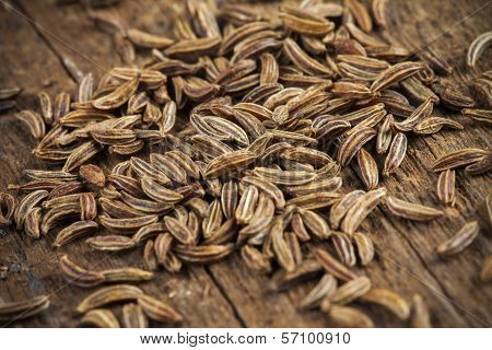 Spice cumin in extreme macro, detail