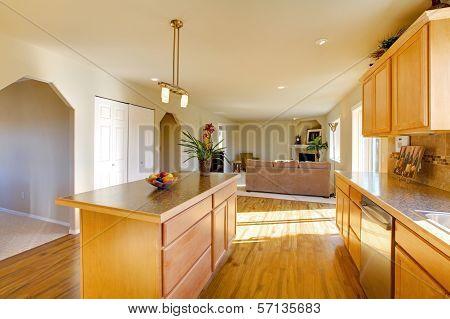 Light Big Dining Room