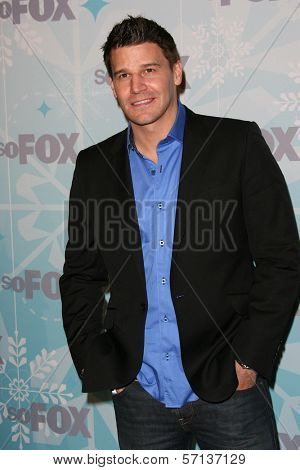 David Boreanaz at the 2011 FOX Winter All-Star Party, Villa Sorriso, Pasadena, CA. 01-11-11