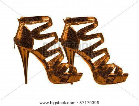 Women's Shoes Golden Colors. Collage