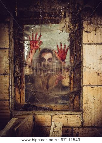 zombie outside a window that is covered with blood spiderwebs and filth. poster