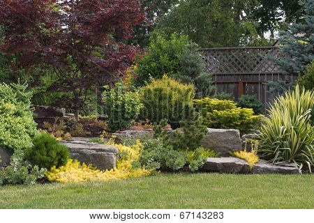 Backyard Rock Landscaping