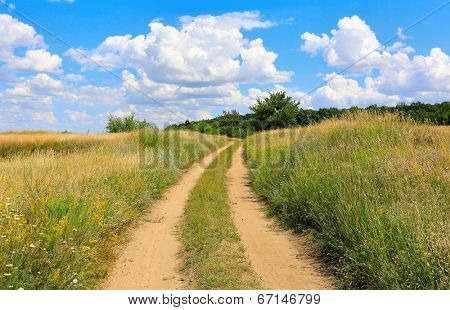 rut road in summer steppe