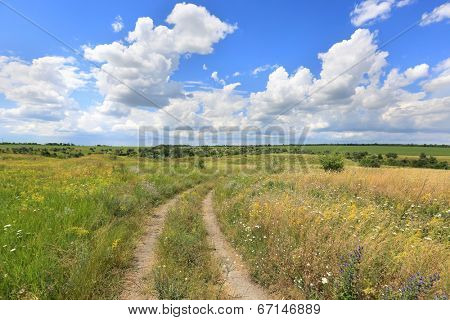 rut rural road aver meadow in steppe