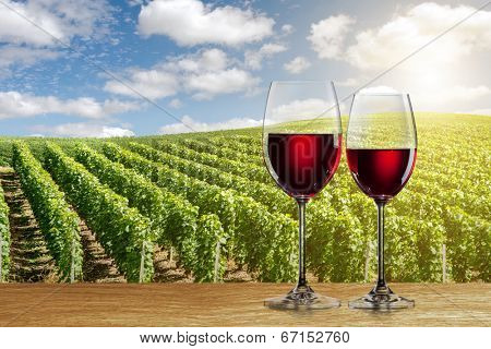 Glass of red wine against vineyard landscape