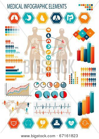 Medical infographics elements. Human body with internal organs. Raster version poster