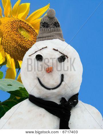 Sunshine And Winter