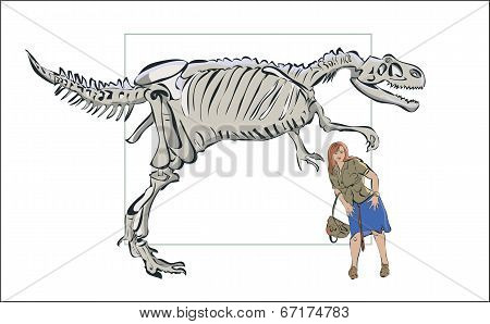 Compare Man With A Skeleton Of A Dinosaur.