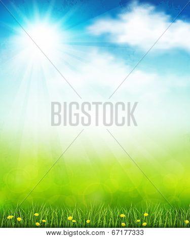 Bright Summer Vector