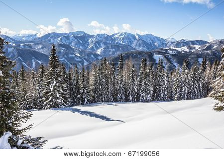 Winter Scenery With Trees Snow Mountains And Blue Sky