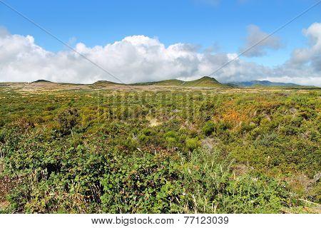 nature landscape in Portugal