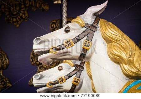 Carousel Horse's