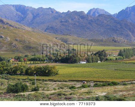 Autumn valley view