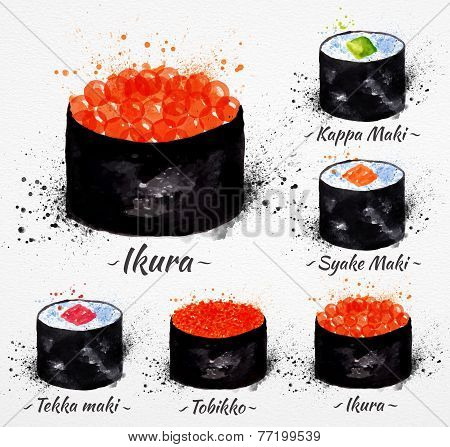Sushi watercolor Maki