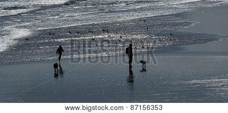 Man, dog and child on beach.