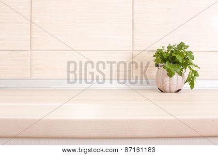Parsley On Countertop