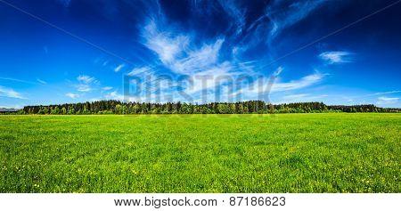 Panorama of summer meadow pastoral idyllic serene scene. Bavaria, Germany poster