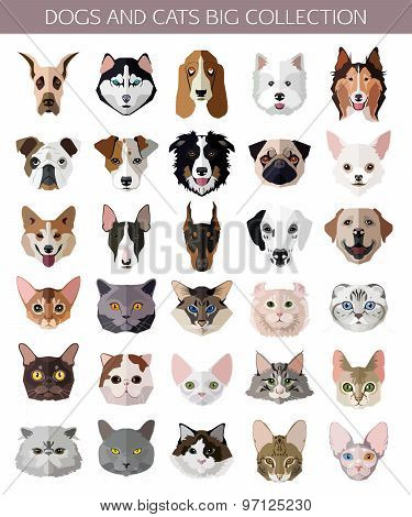 Set of flat popular Breeds of Cats and Dogs icons.