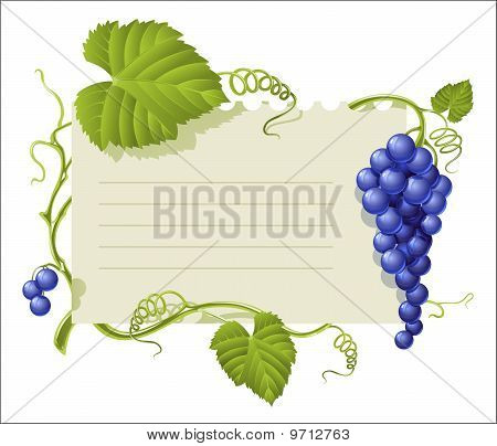 vintage frame with cluster grapes and green leaf