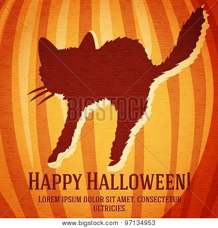 Happy halloween greeting card with startled cat carved in pumpkin.