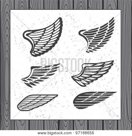 Set of Six Wings.