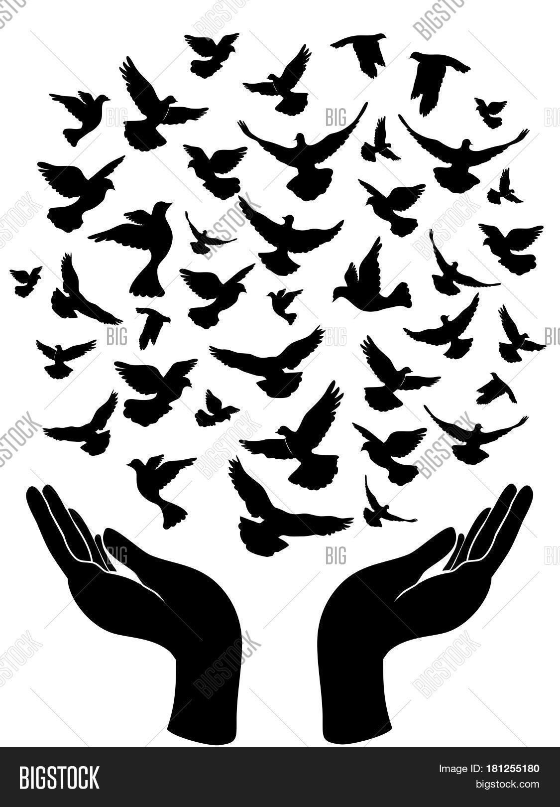 Peace Symbol Hands Vector Photo Free Trial Bigstock