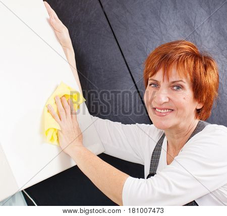 Woman cleaning the kitchen. Adult woman washing cupboard