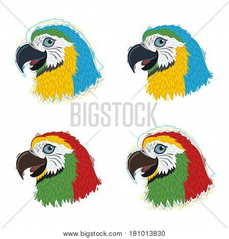 Ara parrot set - red and blue birds. Vector icons or logos.
