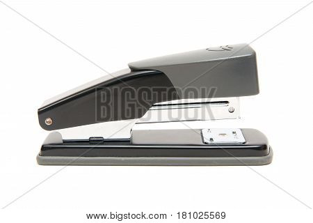 Stapler Isolate On A White Background