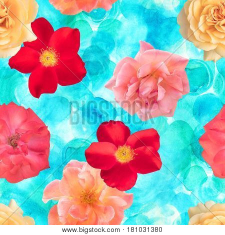 A seamless background pattern with photos of pink, red, and yellow rose flowers on a teal blue watercolor dots texture