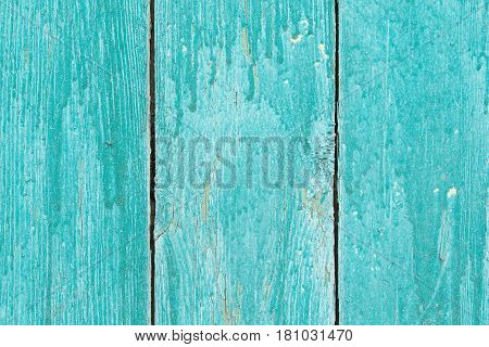 Turquoise Wooden Background From Planks