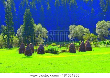 Landscape in Apuseni Mountains, Transylvania. The Apuseni Mountains is a mountain range in Transylvania, Romania, which belongs to the Western Romanian Carpathians, also called Occidentali in Romanian. The Apuseni Mountains have about 400 caves.