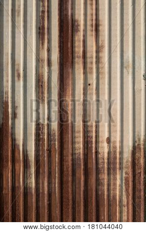 Rusted green zinc fence in sunny day.