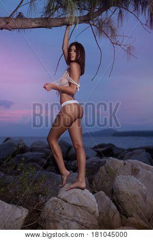 Sensual brunette woman wearing transparent netted top and white bottom lingerie posing on the rocks over beautiful sea and summer sunset sky background