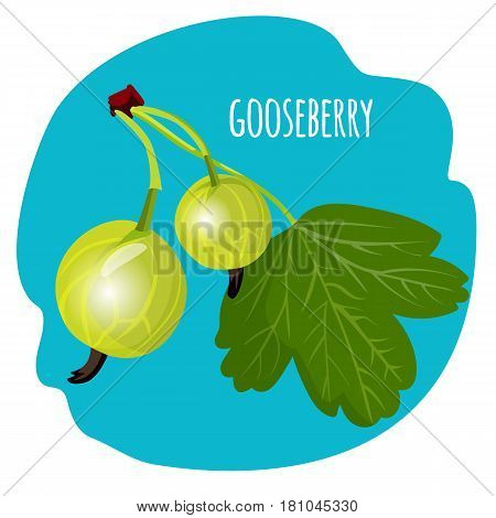 Gooseberry with green leaf on blue background. Edible fruit, tasty organic berries vector illustration. Healthy dieting vegetarian food. Nutrition dieting vegetarian plant, summer dessert