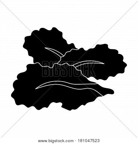 Salad leaves.Burgers and ingredients single icon in black style vector symbol stock web illustration.